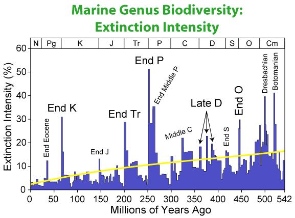 Marine_Biodiversity_Extinction_Intensity.png