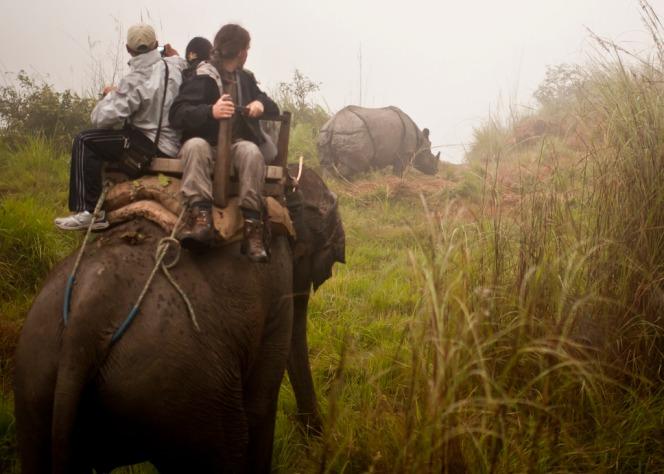 Tourists_Rhino_Chitwan.jpg